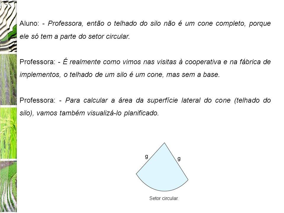 Aluno: - Professora, então o telhado do silo não é um cone completo, porque ele só tem a parte do setor circular. Professora: - É realmente como vimos