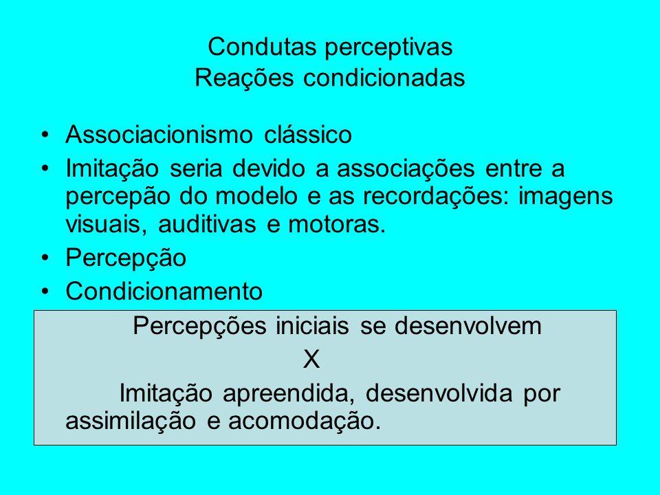 Behaviorismo – estímulo, resposta, reforço.–todas as representações derivam da imagem (p.