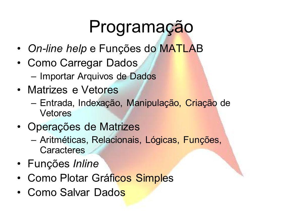 Programação On-line help e Funções do MATLAB Como Carregar Dados –Importar Arquivos de Dados Matrizes e Vetores –Entrada, Indexação, Manipulação, Cria
