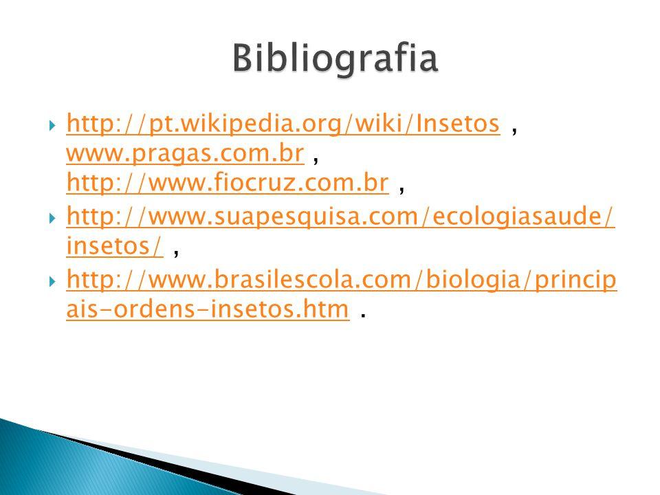 http://pt.wikipedia.org/wiki/Insetos, www.pragas.com.br, http://www.fiocruz.com.br, http://pt.wikipedia.org/wiki/Insetos www.pragas.com.br http://www.