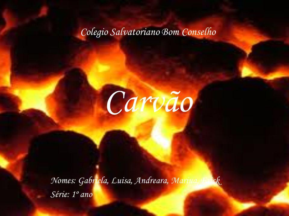 Colegio Salvatoriano Bom Conselho Carvão Nomes: Gabriela, Luisa, Andreara, Mariua, Erick Série: 1º ano