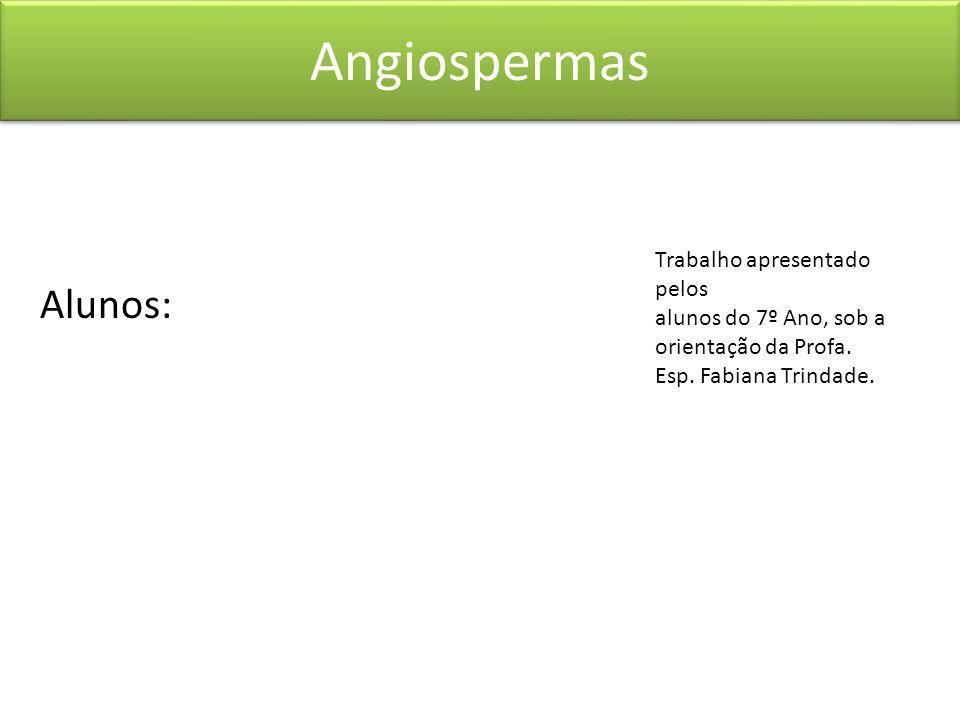 Alunos: Angiospermas Trabalho apresentado pelos alunos do 7º Ano, sob a orientação da Profa. Esp. Fabiana Trindade.