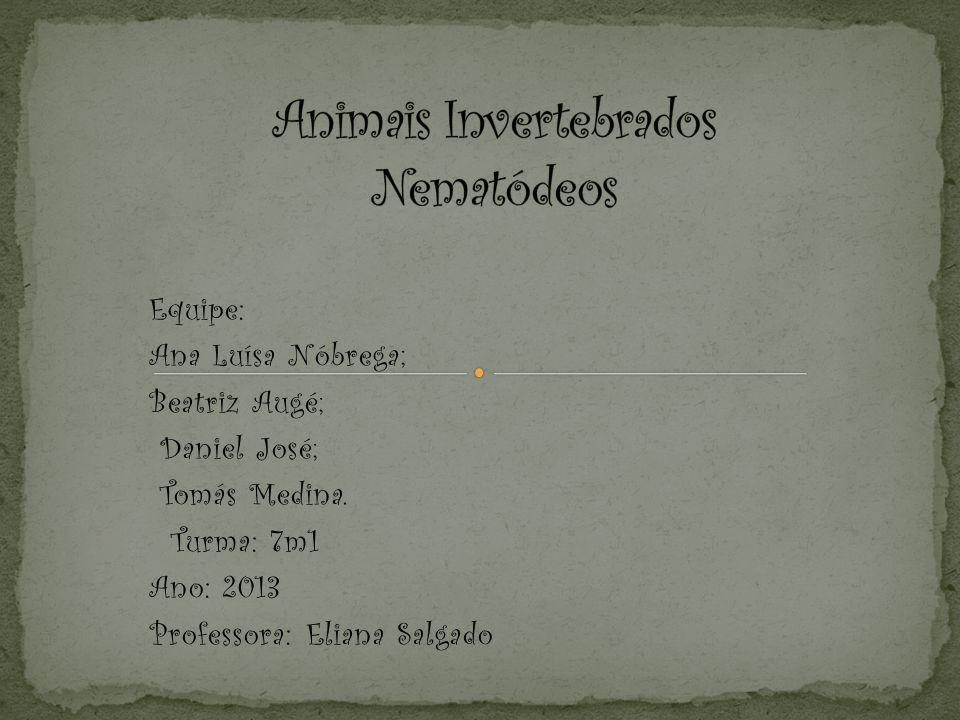 Equipe: Ana Luísa Nóbrega; Beatriz Augé; Daniel José; Tomás Medina.