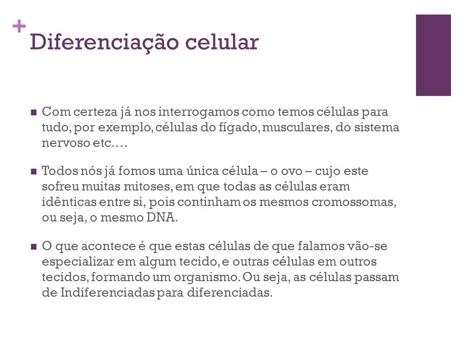 + Diferenciação celular Com certeza já nos interrogamos como temos células para tudo, por exemplo, células do fígado, musculares, do sistema nervoso e