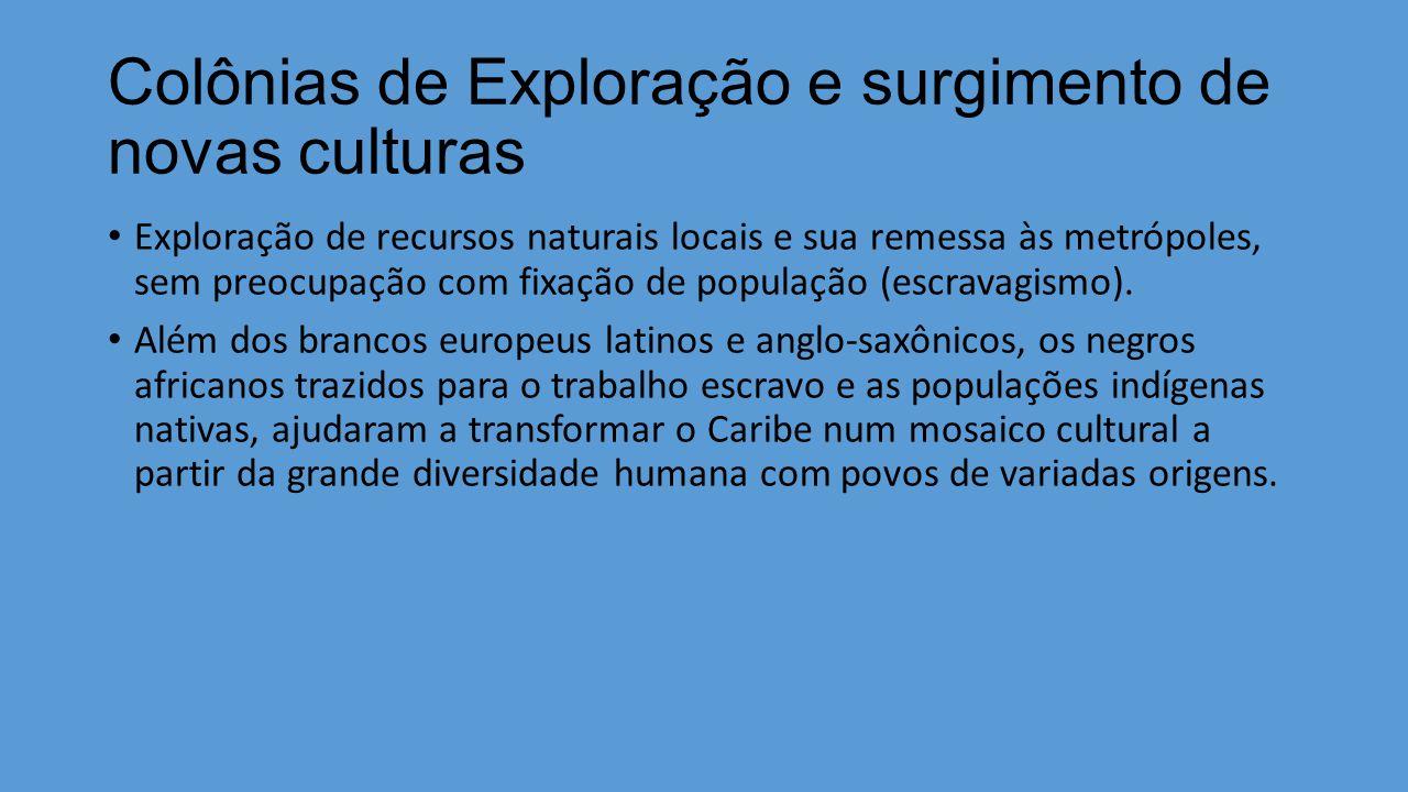 Colônias de Exploração e surgimento de novas culturas Exploração de recursos naturais locais e sua remessa às metrópoles, sem preocupação com fixação de população (escravagismo).