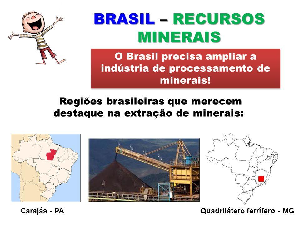 BRASIL – RECURSOS MINERAIS Regiões brasileiras que merecem destaque na extração de minerais: O Brasil precisa ampliar a indústria de processamento de