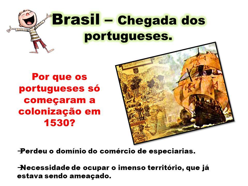 Por que os portugueses só começaram a colonização em 1530? Perdeu o domínio do comércio de especiarias. Necessidade de ocupar o imenso território, que