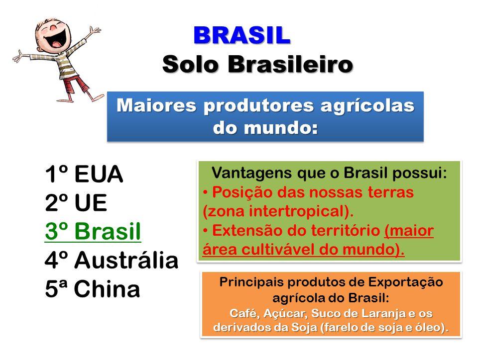 BRASIL Solo Brasileiro Solo Brasileiro Maiores produtores agrícolas do mundo: 1º EUA 2º UE 3º Brasil 4º Austrália 5ª China Vantagens que o Brasil poss