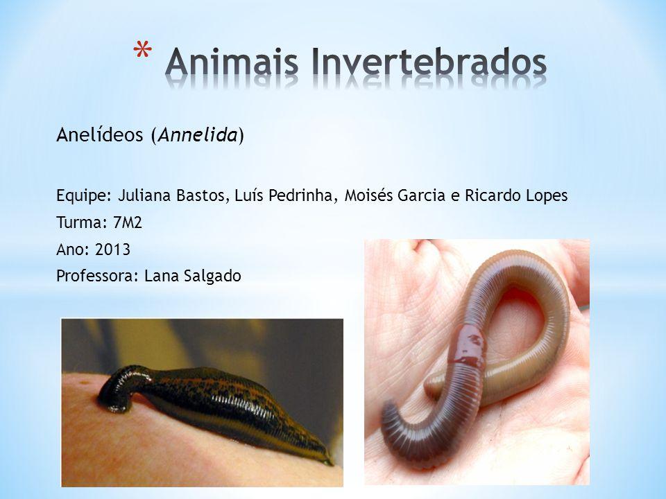 Anelídeos (Annelida) Equipe: Juliana Bastos, Luís Pedrinha, Moisés Garcia e Ricardo Lopes Turma: 7M2 Ano: 2013 Professora: Lana Salgado