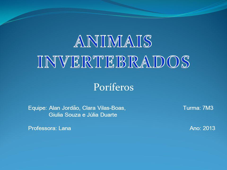 Poríferos Equipe: Alan Jordão, Clara Vilas-Boas, Turma: 7M3 Giulia Souza e Júlia Duarte Professora: Lana Ano: 2013