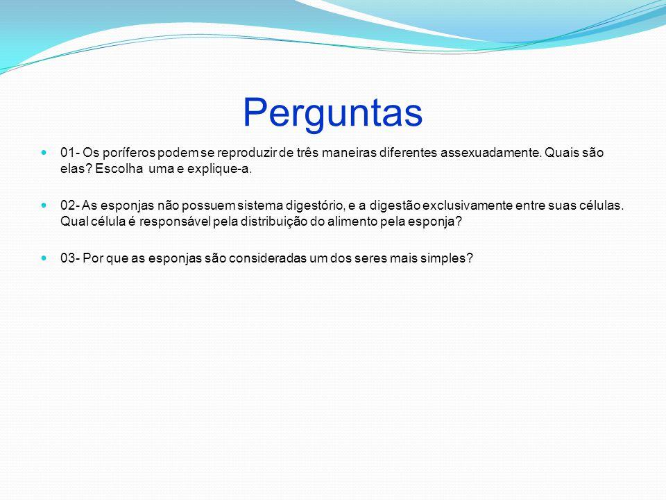 Perguntas 01- Os poríferos podem se reproduzir de três maneiras diferentes assexuadamente. Quais são elas? Escolha uma e explique-a. 02- As esponjas n