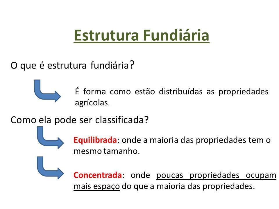 Estrutura Fundiária O que é estrutura fundiária ? É forma como estão distribuídas as propriedades agrícolas. Como ela pode ser classificada? Equilibra