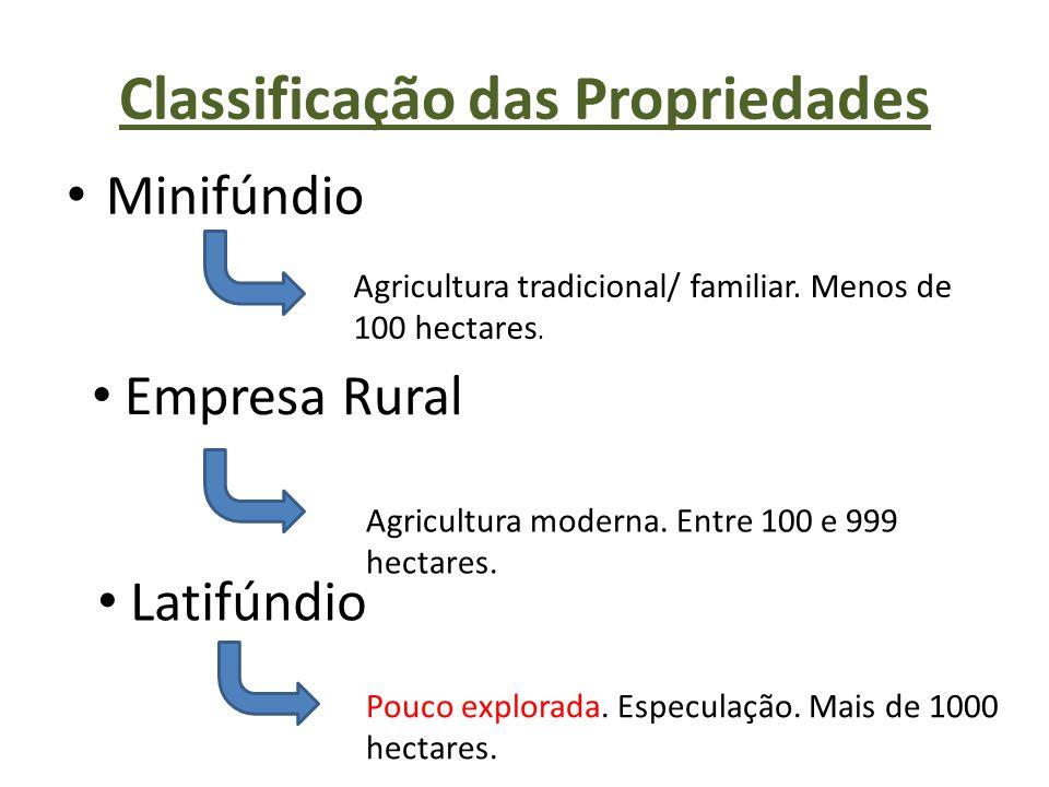 Classificação das Propriedades Minifúndio Agricultura tradicional/ familiar. Menos de 100 hectares. Empresa Rural Agricultura moderna. Entre 100 e 999