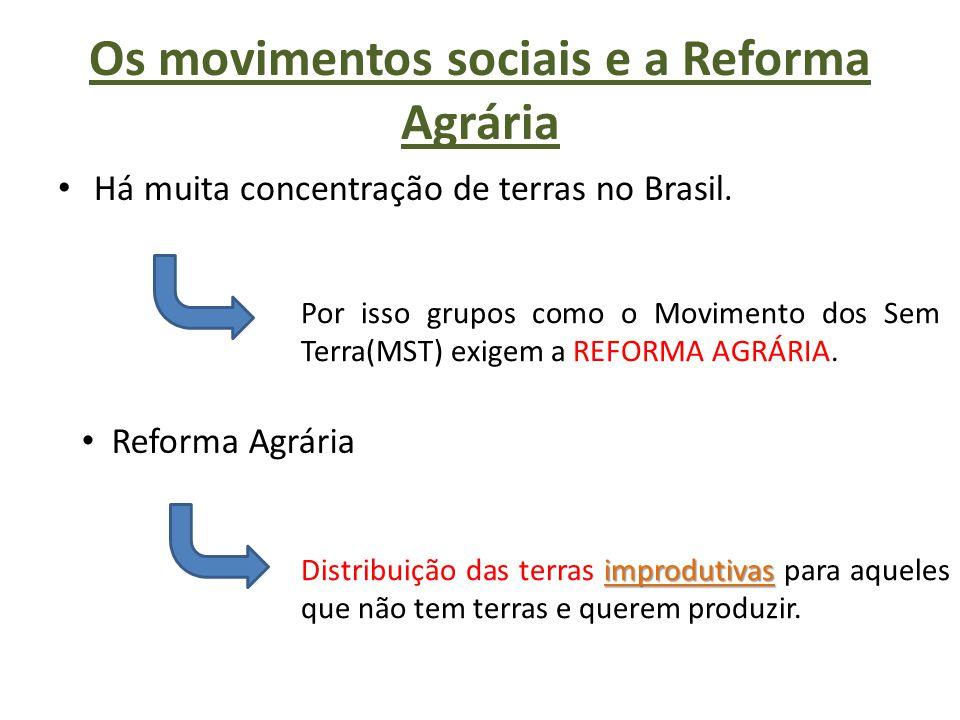 Os movimentos sociais e a Reforma Agrária Há muita concentração de terras no Brasil. Por isso grupos como o Movimento dos Sem Terra(MST) exigem a REFO