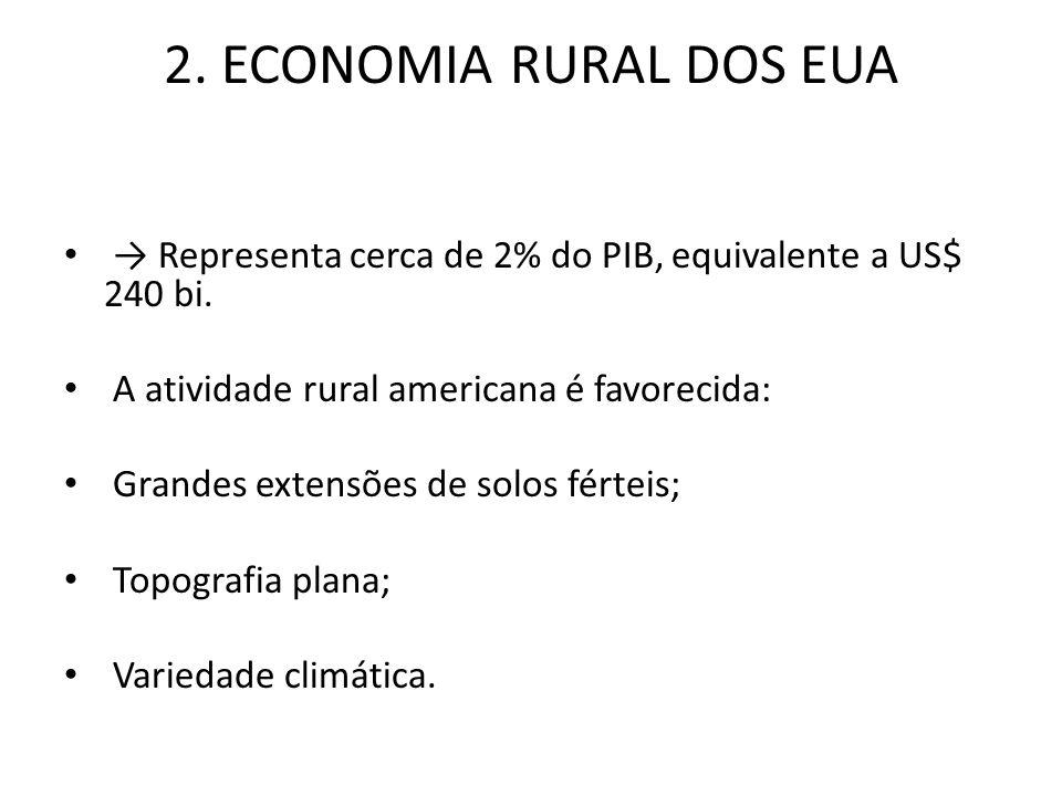 2. ECONOMIA RURAL DOS EUA Representa cerca de 2% do PIB, equivalente a US$ 240 bi. A atividade rural americana é favorecida: Grandes extensões de solo