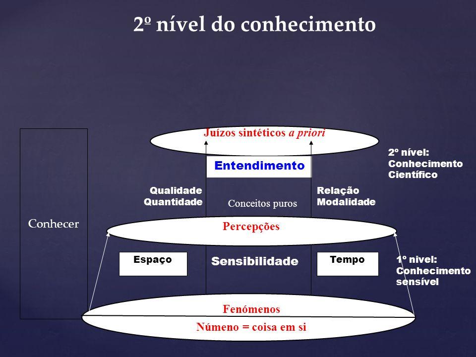 Numa segunda etapa - a do entendimento - os fenómenos estabelecem relações entre si, organizando as percepções correspondentes, através da faculdade d