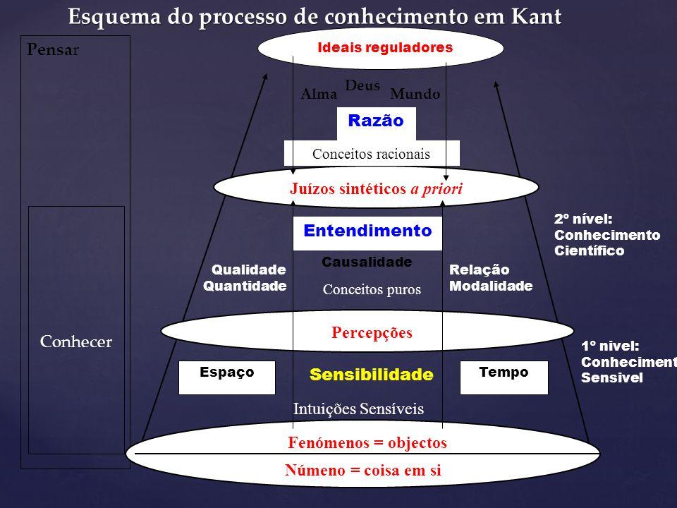 Este edifício não ficaria completo se Kant não pensasse um nível superior completamente metafísico constituído, não por conhecimentos mas, por um conj