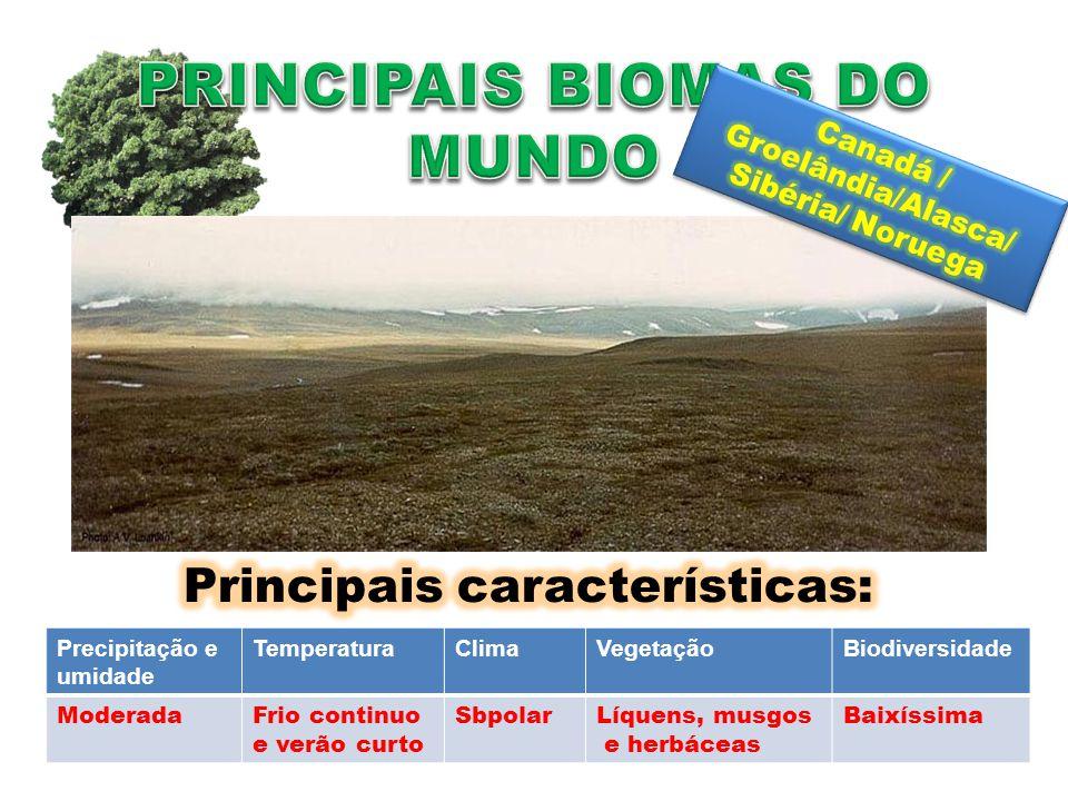 Precipitação e umidade TemperaturaClimaVegetaçãoBiodiversidade ModeradaInverno muito frio e verão frio curto TemperadoÁrvores sempre verdes, arbustos Muito Baixa