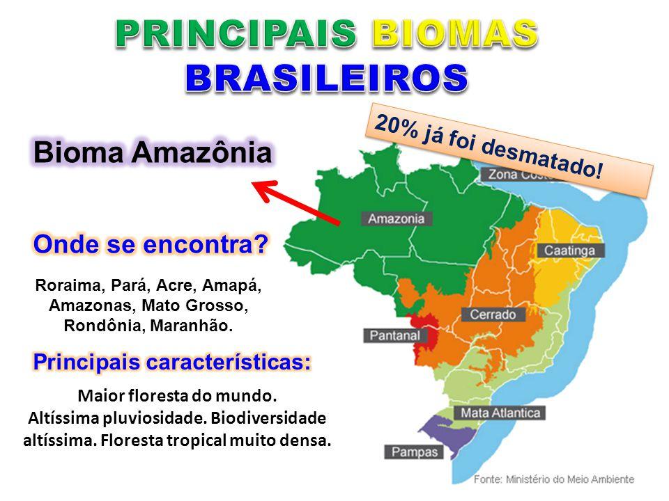 Roraima, Pará, Acre, Amapá, Amazonas, Mato Grosso, Rondônia, Maranhão. Maior floresta do mundo. Altíssima pluviosidade. Biodiversidade altíssima. Flor