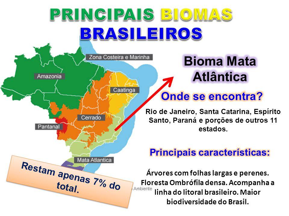 Rio de Janeiro, Santa Catarina, Espírito Santo, Paraná e porções de outros 11 estados. Árvores com folhas largas e perenes. Floresta Ombrófila densa.