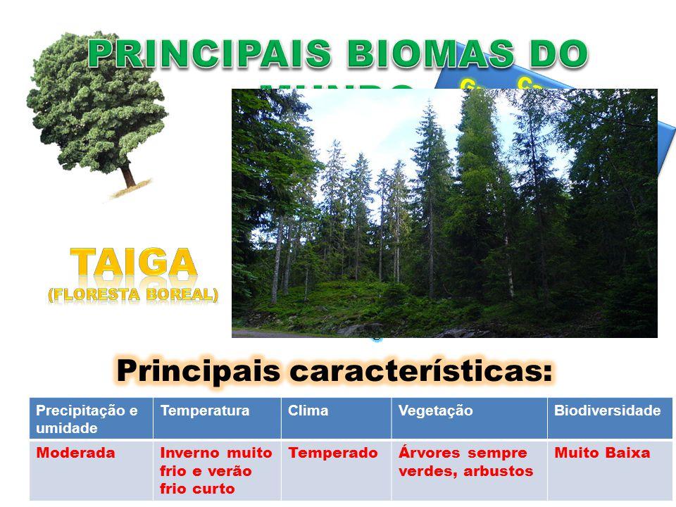 Precipitação e umidade TemperaturaClimaVegetaçãoBiodiversidade ModeradaInverno muito frio e verão frio curto TemperadoÁrvores sempre verdes, arbustos