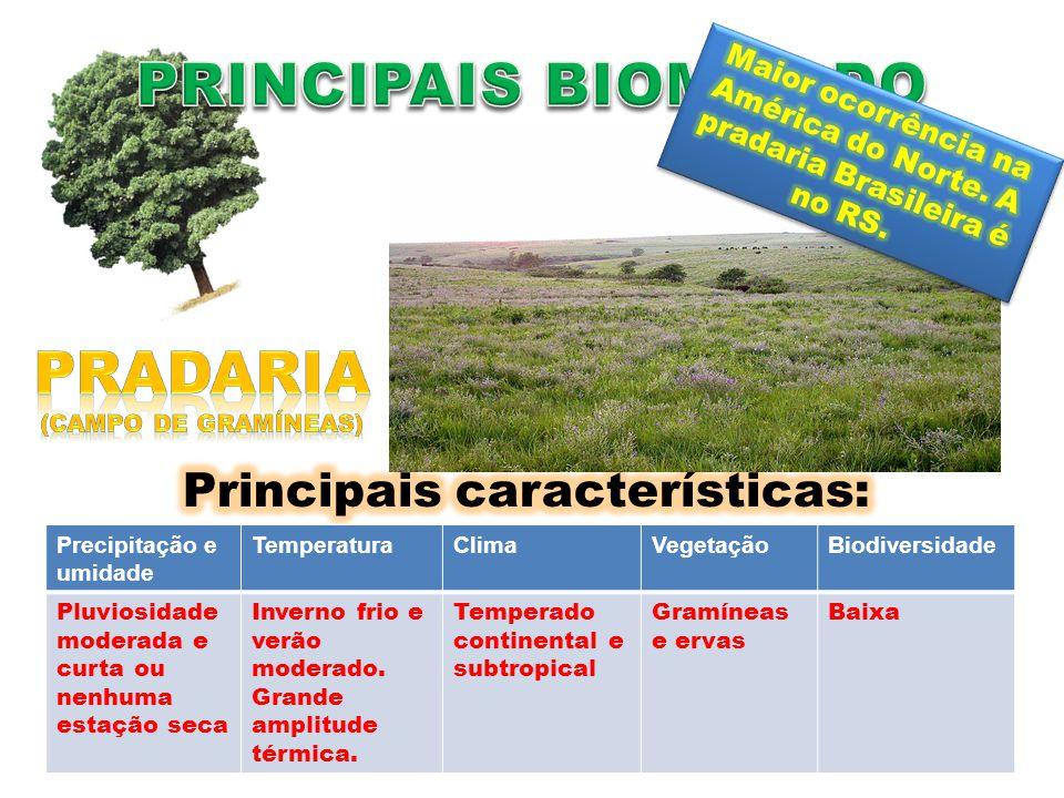 Rio Grande do Sul A pluviosidade não é elevada. Predominam as gramíneas. Clima subtropical.