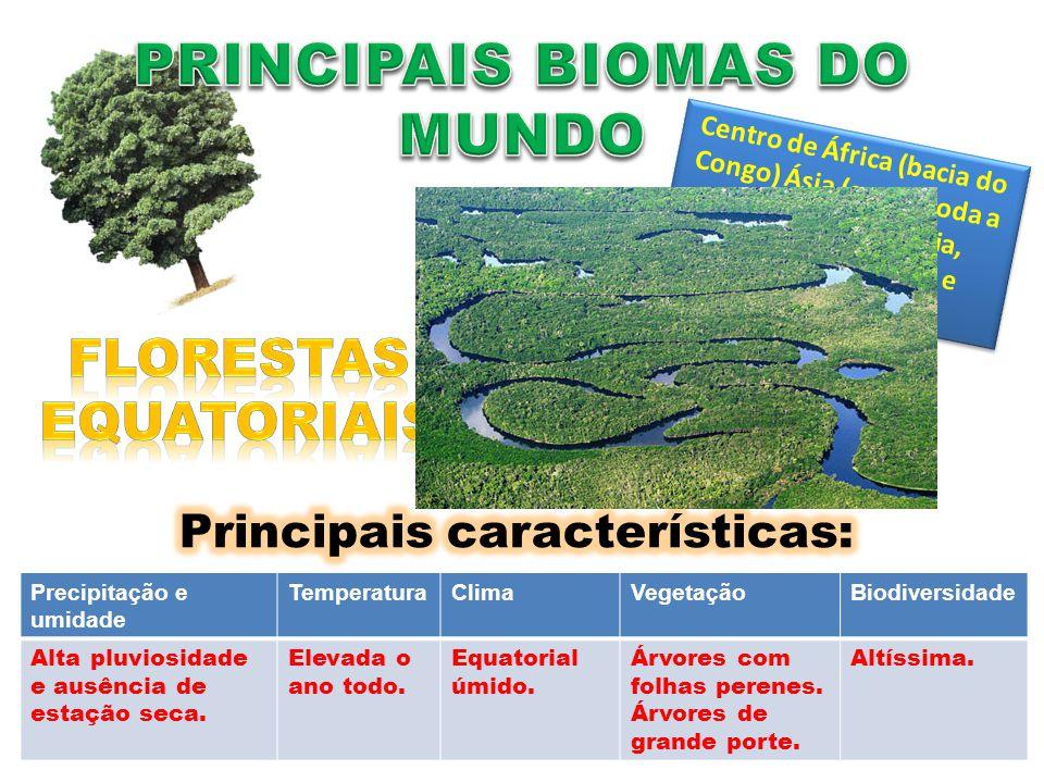 Precipitação e umidade TemperaturaClimaVegetaçãoBiodiversidade Alta pluviosidade e ausência de estação seca. Elevada o ano todo. Equatorial úmido. Árv
