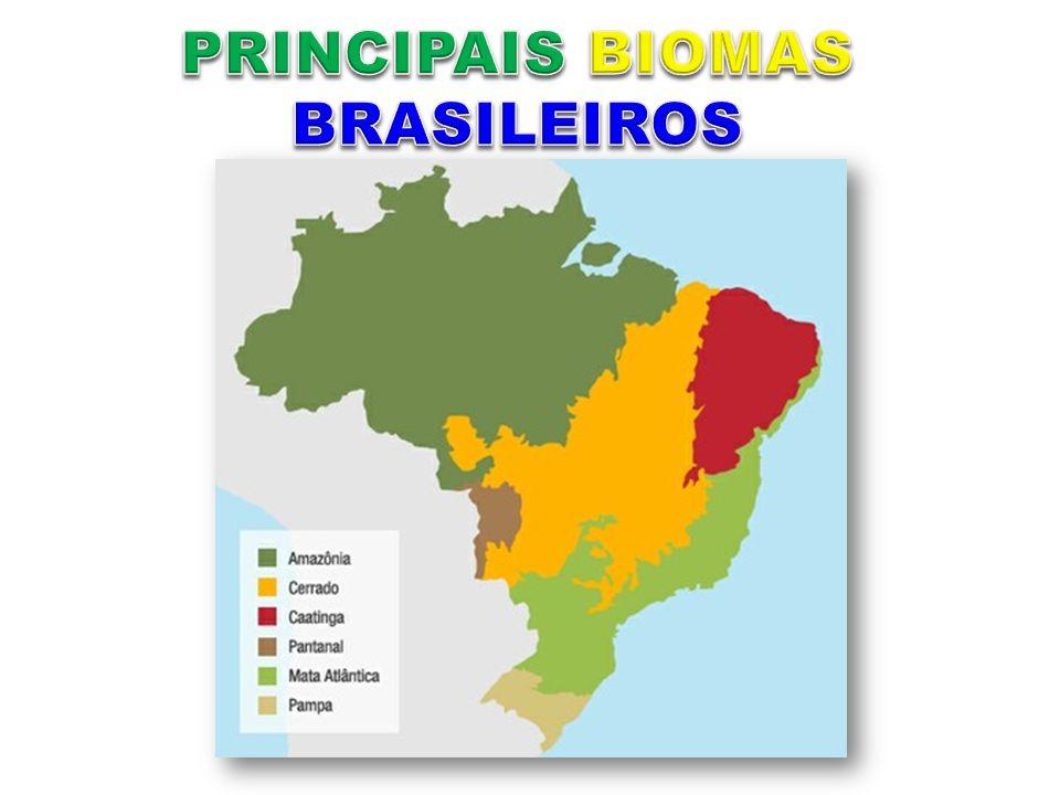 Roraima, Pará, Acre, Amapá, Amazonas, Mato Grosso, Rondônia, Maranhão.