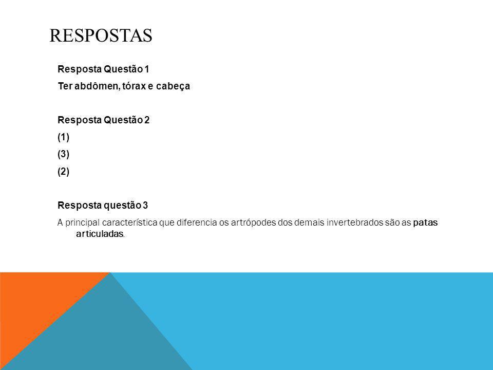 BIBLIOGRAFIA http://websmed.portoalegre.rs.gov.br/escolas/obino/revista/c12_artropodes/%20c12_artop odes.html www.sobiologia.com.br/conteudos/Reinos3/bioartropodes.php http://www.pragas.com.br/noticias/destaques/insetosxhomem.php http://www.escolakids.com/insetos.htm http://pt.wikipedia.org/wiki/Insetos http://www.infoescola.com/biologia/insetos-insecta/ Acessado nos dias 10 e 11 de setembro
