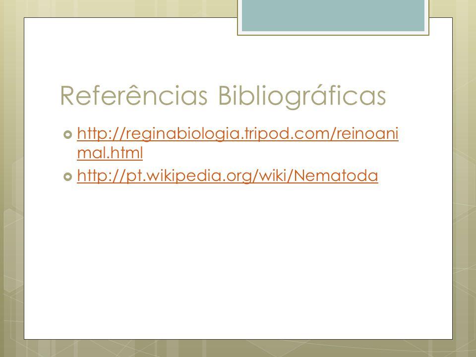 Referências Bibliográficas http://reginabiologia.tripod.com/reinoani mal.html http://reginabiologia.tripod.com/reinoani mal.html http://pt.wikipedia.o
