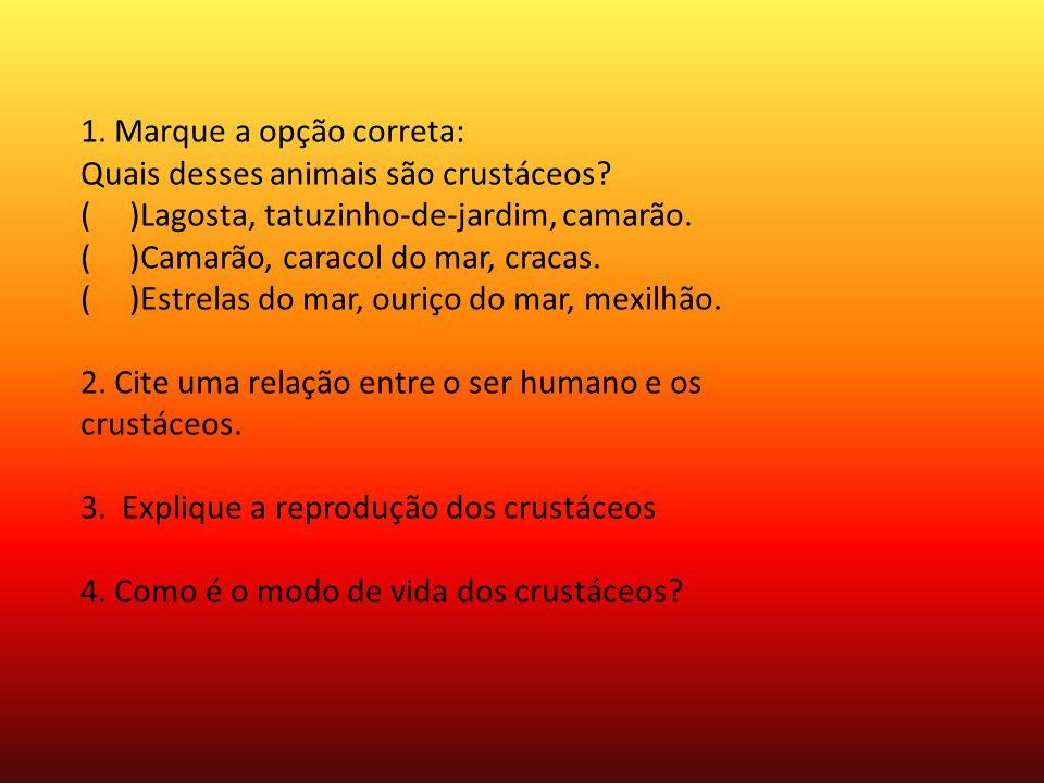 Bibliográfia: http://www.escolakids.com/crustaceos.htm http://www.suapesquisa.com/ecologiasaude/crustaceos/ http://www.infoescola.com/biologia/crustaceos-crustacea/ http://www.biomania.com.br/bio/conteudo.asp?cod=1306 http://blogdacomunicacao.com.br/fibra-de-crustaceos-ajuda-a- despoluir-agua/ www.aquariodeubatuba.com.br/crustaceos Batista João, livro de ciências, Para Viver Juntos