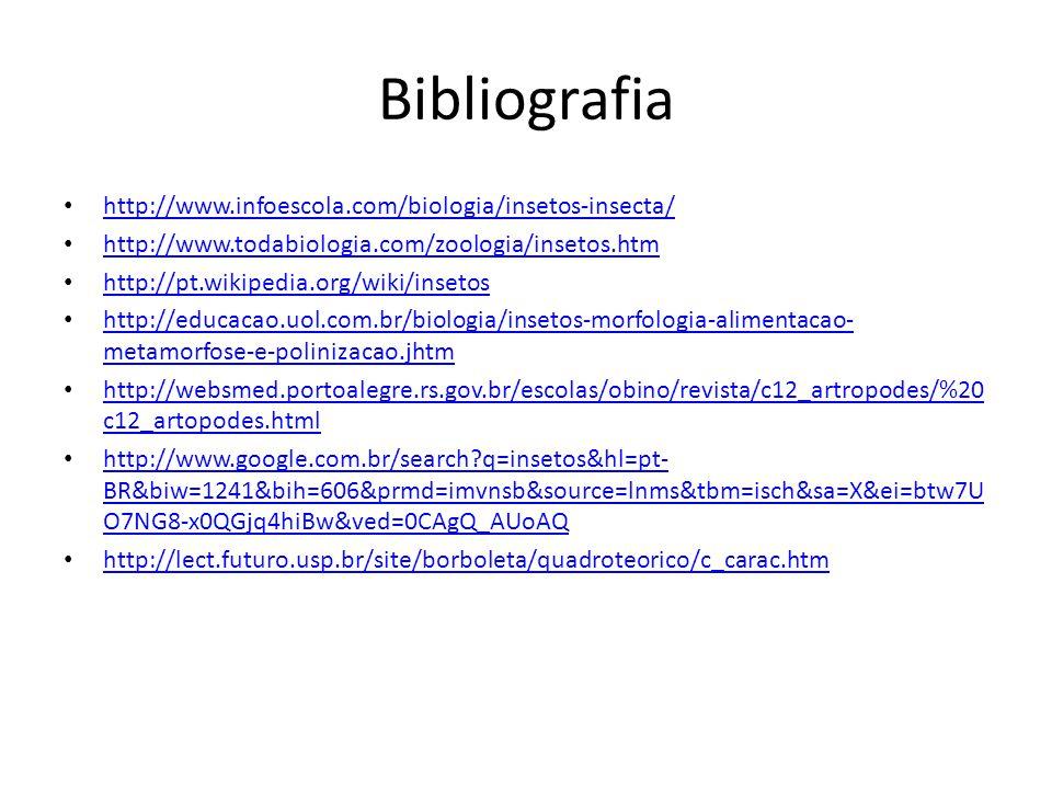 Bibliografia http://www.infoescola.com/biologia/insetos-insecta/ http://www.todabiologia.com/zoologia/insetos.htm http://pt.wikipedia.org/wiki/insetos