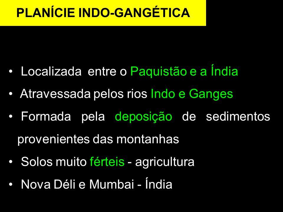 Localizada entre o Paquistão e a Índia Atravessada pelos rios Indo e Ganges Formada pela deposição de sedimentos provenientes das montanhas Solos muito férteis - agricultura Nova Déli e Mumbai - Índia PLANÍCIE INDO-GANGÉTICA