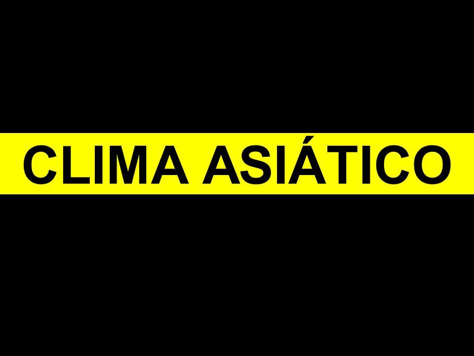 CLIMA ASIÁTICO