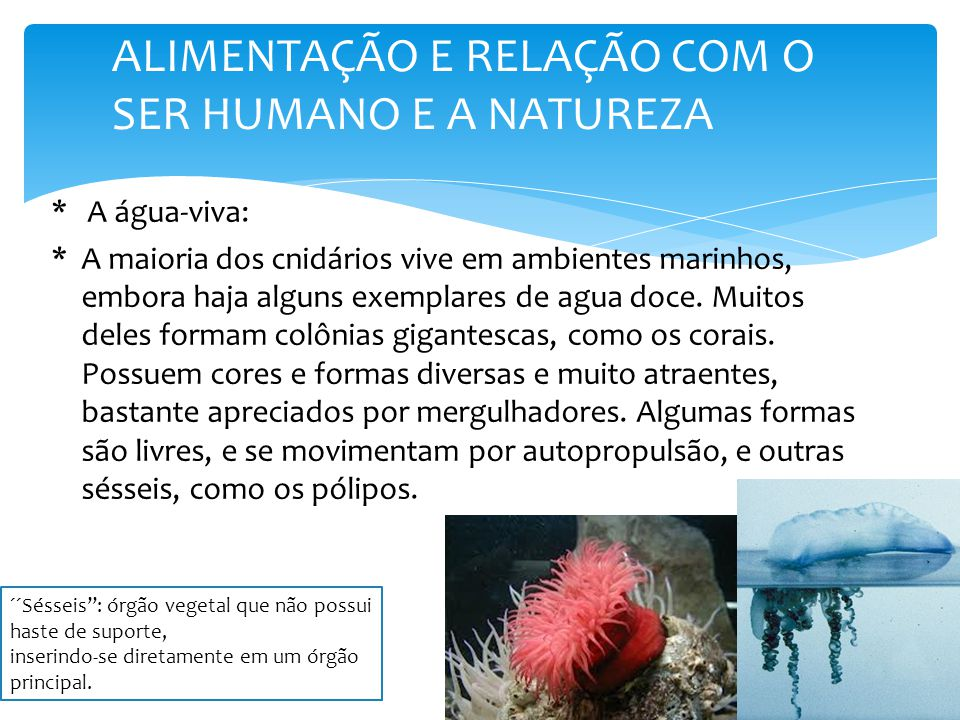 *A maioria dos cnidários vive em ambientes marinhos, embora haja alguns exemplares de agua doce.