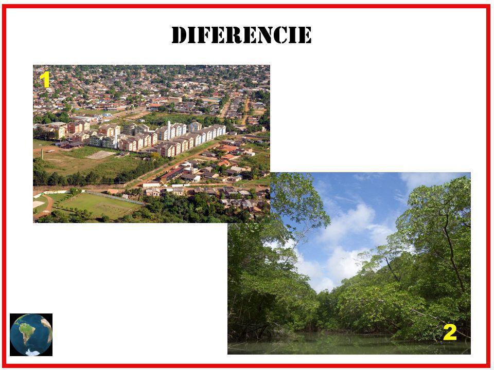 Diferencie 1 2