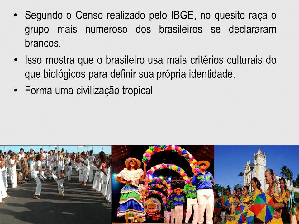 Segundo o Censo realizado pelo IBGE, no quesito raça o grupo mais numeroso dos brasileiros se declararam brancos.