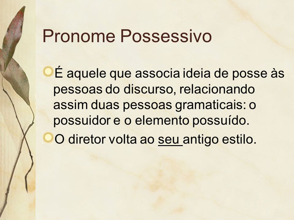 Pronome Possessivo É aquele que associa ideia de posse às pessoas do discurso, relacionando assim duas pessoas gramaticais: o possuidor e o elemento p
