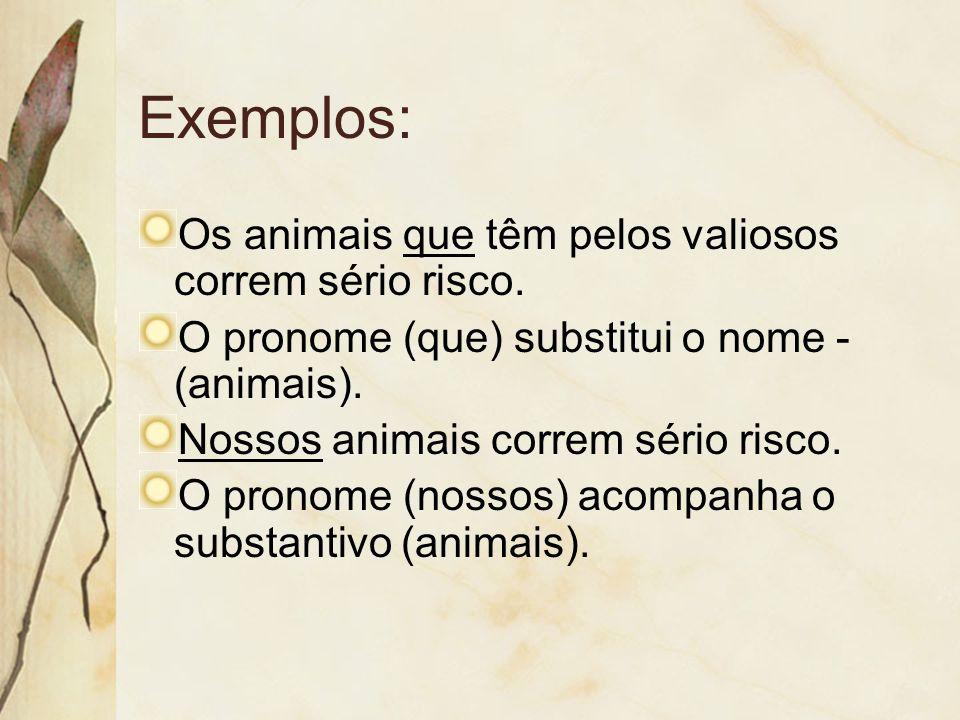 Exemplos: Os animais que têm pelos valiosos correm sério risco. O pronome (que) substitui o nome - (animais). Nossos animais correm sério risco. O pro