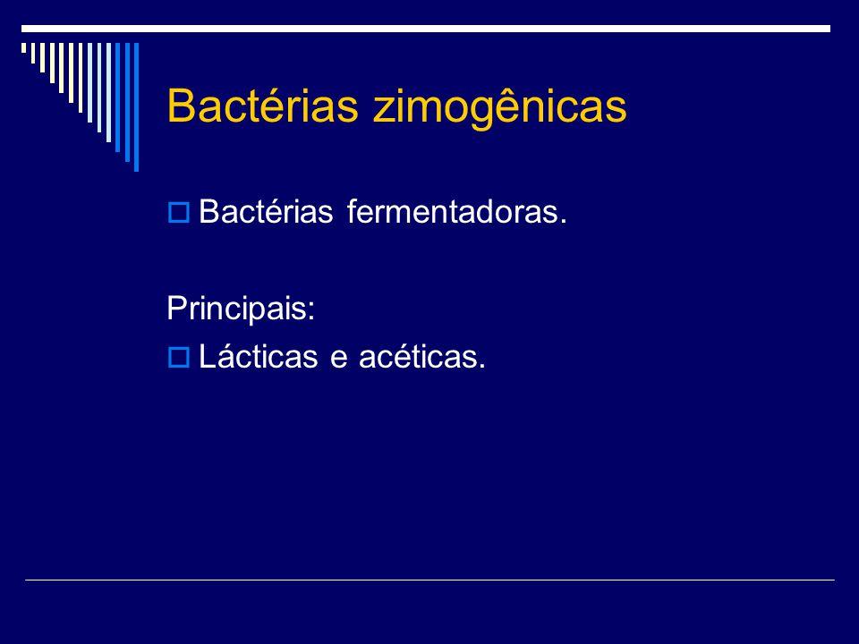 Bactérias zimogênicas Bactérias fermentadoras. Principais: Lácticas e acéticas.