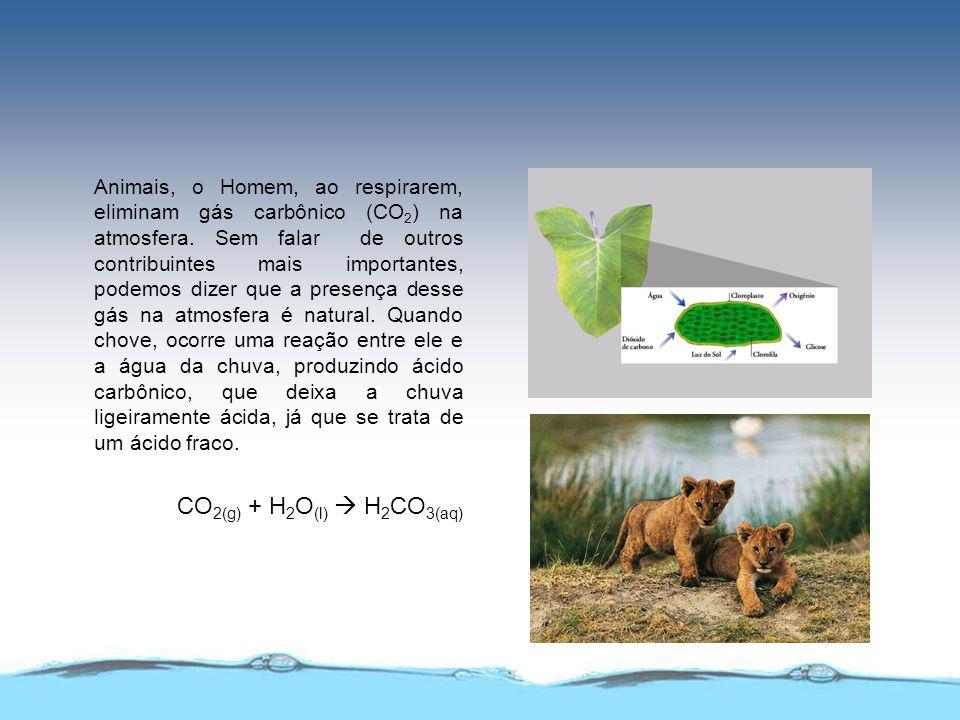 Animais, o Homem, ao respirarem, eliminam gás carbônico (CO 2 ) na atmosfera. Sem falar de outros contribuintes mais importantes, podemos dizer que a