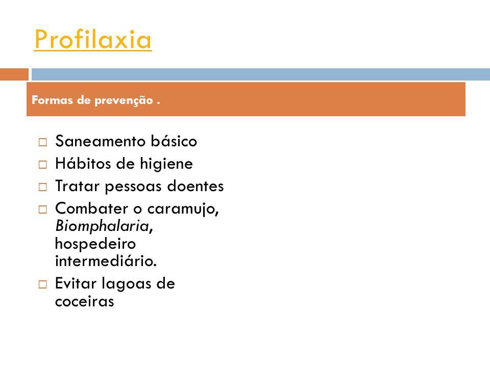 Sintomas Inchaço do fígado e baço Problemas intestinais Cólicas intestinais Criança infectada com esquistossomose