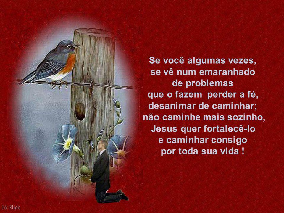 Se você algumas vezes, se vê num emaranhado de problemas que o fazem perder a fé, desanimar de caminhar; não caminhe mais sozinho, Jesus quer fortalecê-lo e caminhar consigo por toda sua vida !