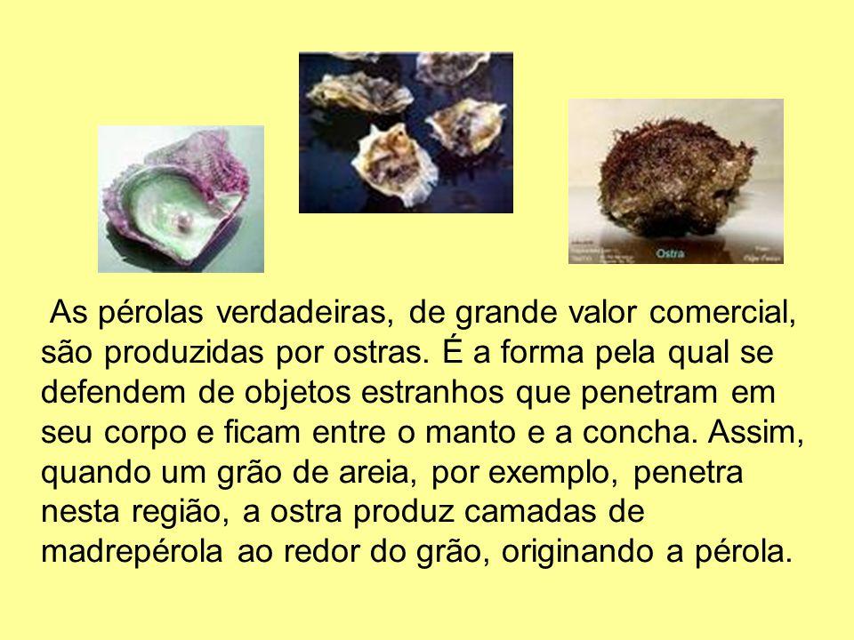 As pérolas verdadeiras, de grande valor comercial, são produzidas por ostras. É a forma pela qual se defendem de objetos estranhos que penetram em seu