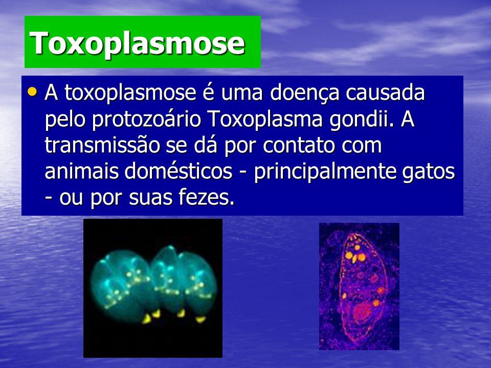 Toxoplasmose A toxoplasmose é uma doença causada pelo protozoário Toxoplasma gondii. A transmissão se dá por contato com animais domésticos - principa