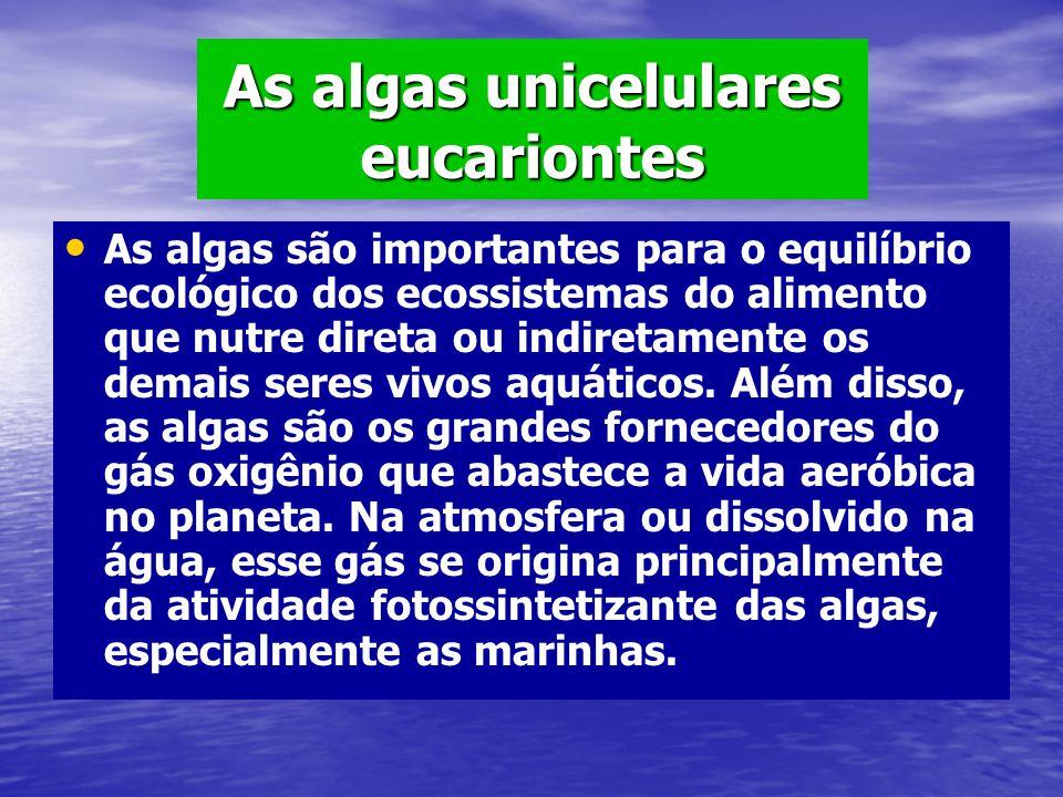 As algas unicelulares eucariontes As algas são importantes para o equilíbrio ecológico dos ecossistemas do alimento que nutre direta ou indiretamente