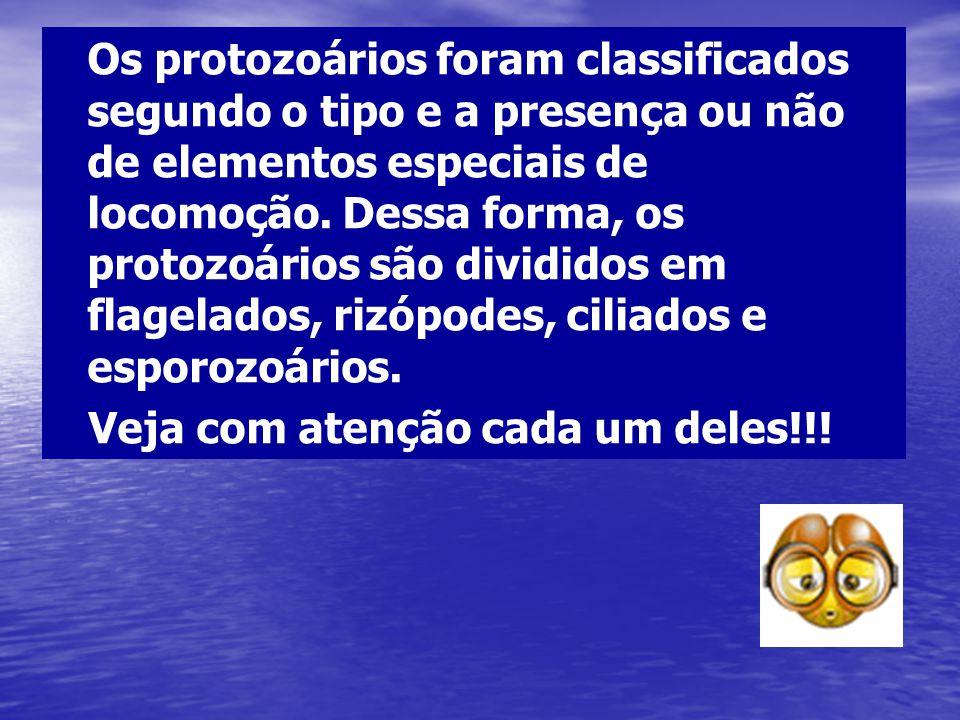 Os protozoários foram classificados segundo o tipo e a presença ou não de elementos especiais de locomoção. Dessa forma, os protozoários são divididos