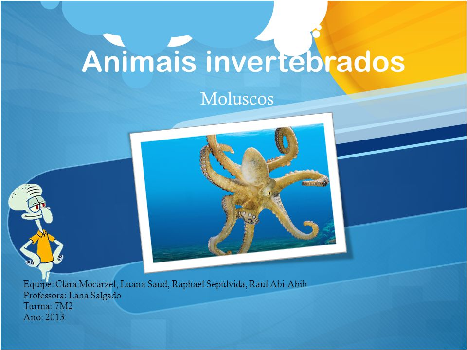 Animais invertebrados Moluscos Equipe: Clara Mocarzel, Luana Saud, Raphael Sepúlvida, Raul Abi-Abib Professora: Lana Salgado Turma: 7M2 Ano: 2013