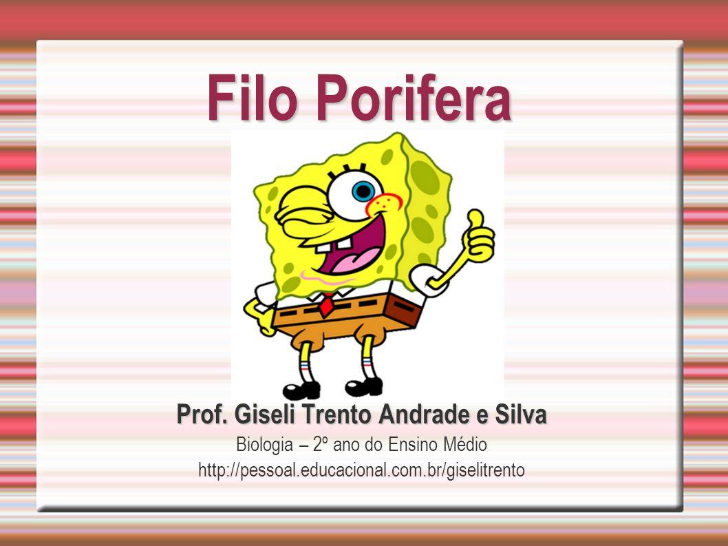 Filo Porifera Prof. Giseli Trento Andrade e Silva Biologia – 2º ano do Ensino Médio http://pessoal.educacional.com.br/giselitrento