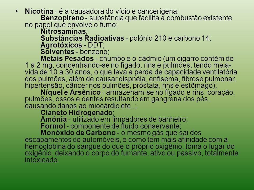 Nicotina - é a causadora do vício e cancerígena; Benzopireno - substância que facilita a combustão existente no papel que envolve o fumo; Nitrosaminas; Substâncias Radioativas - polônio 210 e carbono 14; Agrotóxicos - DDT; Solventes - benzeno; Metais Pesados - chumbo e o cádmio (um cigarro contém de 1 a 2 mg, concentrando-se no fígado, rins e pulmões, tendo meia- vida de 10 a 30 anos, o que leva a perda de capacidade ventilatória dos pulmões, além de causar dispnéia, enfisema, fibrose pulmonar, hipertensão, câncer nos pulmões, próstata, rins e estômago); Níquel e Arsênico - armazenam-se no fígado e rins, coração, pulmões, ossos e dentes resultando em gangrena dos pés, causando danos ao miocárdio etc..; Cianeto Hidrogenado; Amônia - utilizado em limpadores de banheiro; Formol - componente de fluído conservante; Monóxido de Carbono - o mesmo gás que sai dos escapamentos de automóveis, e como tem mais afinidade com a hemoglobina do sangue do que o próprio oxigênio, toma o lugar do oxigênio, deixando o corpo do fumante, ativo ou passivo, totalmente intoxicado.